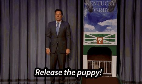 Whether or not leaving the house will be worth it. | 12 Things We Wish Jimmy Fallon's Puppies Could Predict