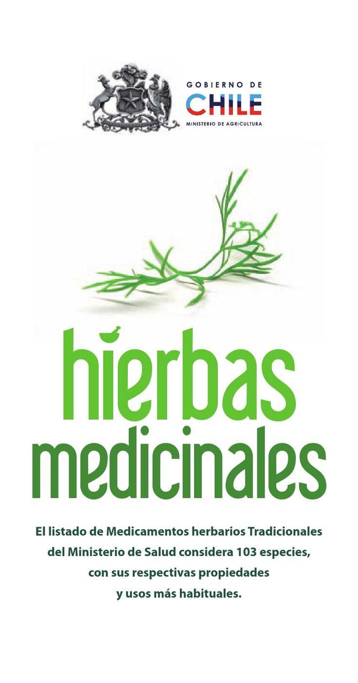 Hierbas medicinales de uso tradicional en chile chile for Mezclas de plantas medicinales