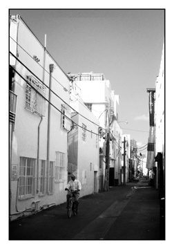 Miami Alleyway