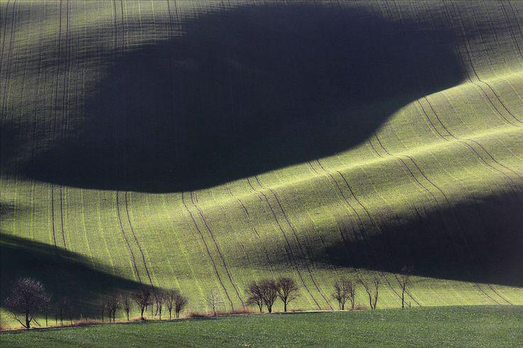 Moravian Fields