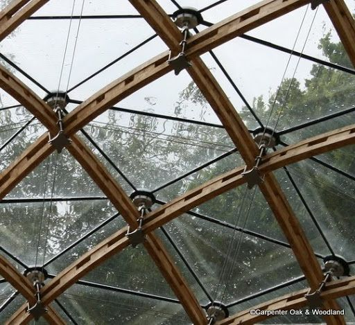 Timber Gridshell, Chiddingstone, Kent