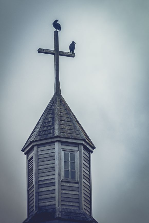 The old church Vultures