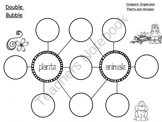 Thinking Maps Graphic Organizers Through The Year from