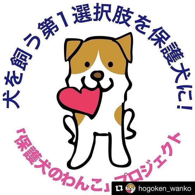 #Repost @hogoken_wanko (@get_repost) ・・・ 🐕💫 このロゴマーク🐶を年賀状やクリスマスカードに(SNS版でも)自由に使って下さい❣️ 保護犬を知ってもらうキッカケになると思います😊✨ このロゴが何なのかと聞かれたら、保護犬について説明しましょう🐕💕 (特に年賀状には、戌年🐕でもありますし最適ですね😆) . 思いつくのが遅くてすみません😅お申し出があって気づきました💦 ご希望の方はこのpostしたpicを使って頂いてもいいですし、ダイレクトやLINEで原版をお送りすることも出来ますので、ご連絡下さい✨ . 作成した年賀状やクリスマスカードをpostしたり、記事にしていただけると嬉しいです😃 よろしくお願いします🙇🏻 . . . #元保護犬 #保護犬 #雑種犬 #繁殖犬  #犬 #愛犬 #rescueddog  #adopteddog #保護犬のわんこ写真集  #保護犬のわんこかるた  #保護犬のわんこスタンプ #保護犬のわんこプロジェクト #保護犬のわんこ