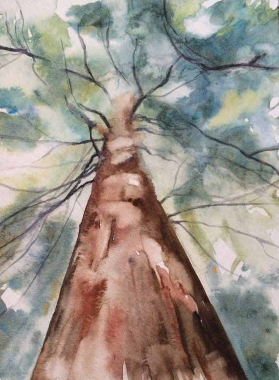 Original Watercolor Painting Of Upward Facing Tree Painted On