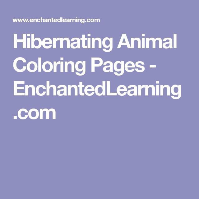 the 25 best hibernating animals ideas on pinterest which animals hibernate animals that. Black Bedroom Furniture Sets. Home Design Ideas