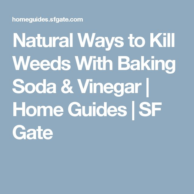 Natural Ways to Kill Weeds With Baking Soda & Vinegar | Home Guides | SF Gate