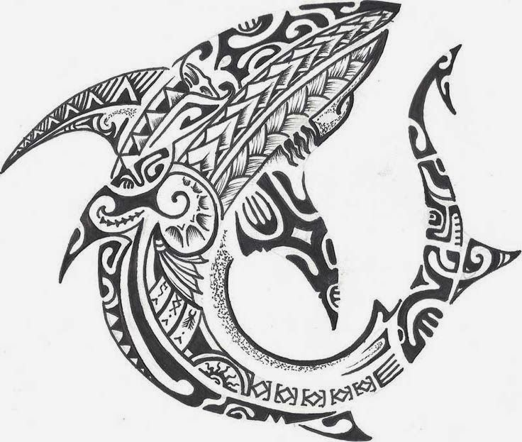 maori shark tattoos - Google Search