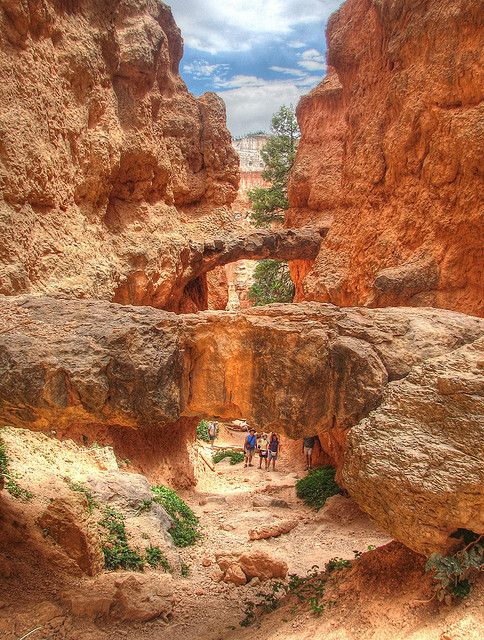 Twin Bridges, off Bryce Canyon's Navajo Loop Trail, Bryce Canyon NP, Utah, US
