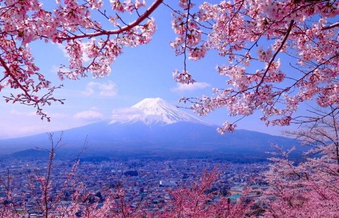 The Best Windows 10 Themes And Where To Download Them Cherry Blossom Wallpaper Nature Desktop Wallpaper Cherry Blossom Japan