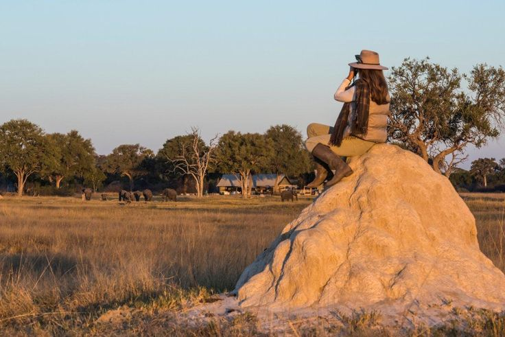A Hwange Homecoming #Zimbabwe #safari