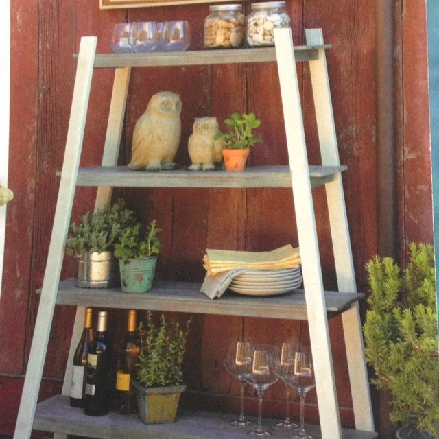 Outdoor shelving Home Pinterest Trees, Cats and Shelving