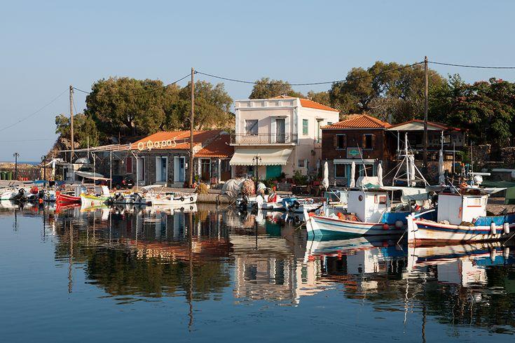 Addicted to Greece - Molyvolos