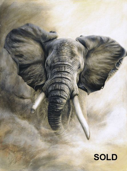 Steve Morvell Australian Wildlife Artist Charcoal engraving - painting African bull elephant