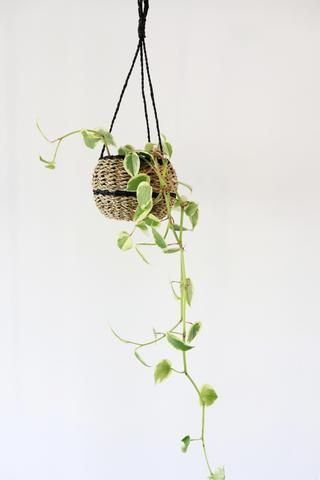 Jungalow Style – Copper and Cross. Rattan Hanging Planter $55