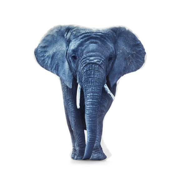 Elephant Elephant Cushion Elephant Pillow Zoo Animals