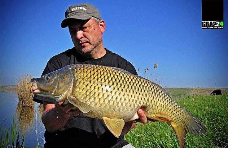 """Catalin Toader pentru crap24.ro: """"Cred că reducerea numărului de tipuri de cârlige la minim este un exercițiu pe care ar trebui să și-l propună orice pescar, mai ales cei care...""""  Detalii și preferințe personale în ceea ce privește cârligele de pescuit la crap, AICI >>> http://www.crap24.ro/carlige-bune-de-pescuit-la-crap/"""