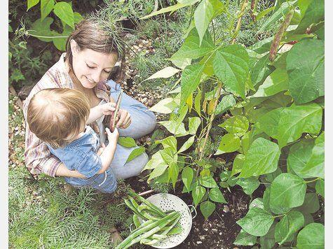 Urban Gardening in Fürstenfeldbruck Gemeinsam säen, gießen und ernten: Eine Grünfläche beim Hagebaumarkt wird zum städtischen Garten. symbolfoto: panthermedia