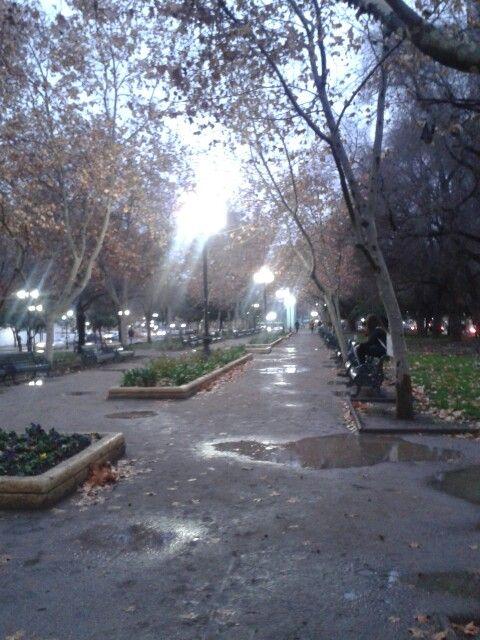 Parque Bustamante.