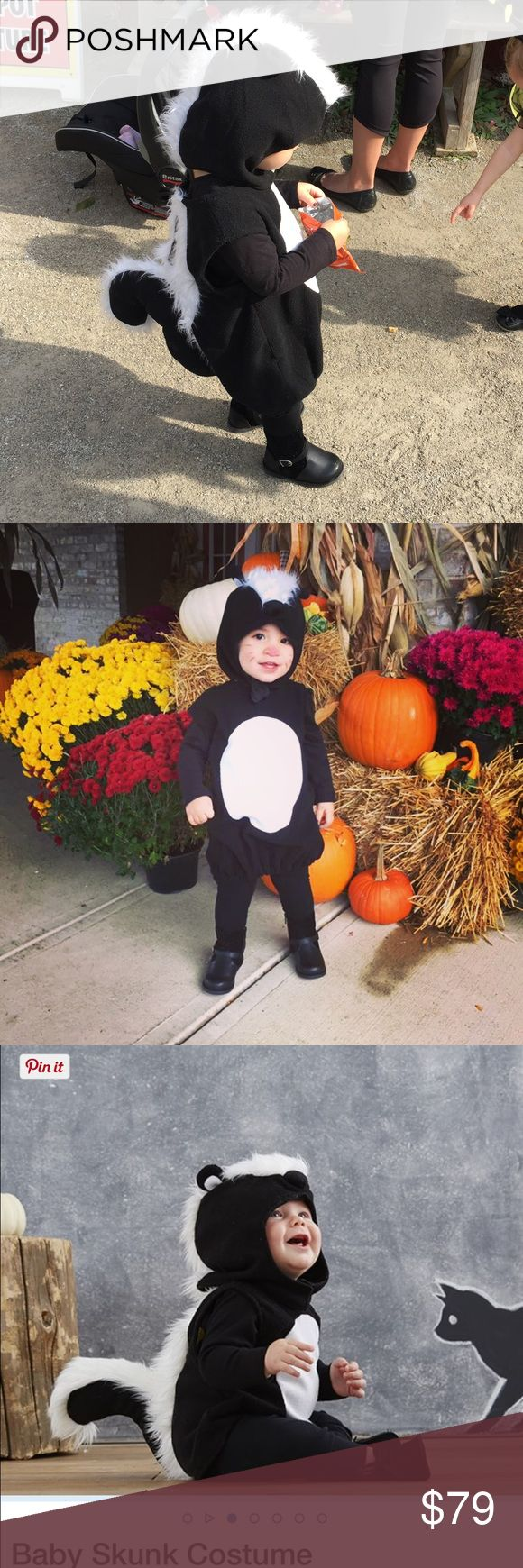 "Pottery Barn infant skunk costume Omg! The CUTEST COSTUME EVER! People were dying over this. No longer available at pb and is selling on eBay for starting bids at 100! Worn once! Free matching ""skunk"" treat or treat bag also purchased from PB. pottery barn kids Costumes Halloween"
