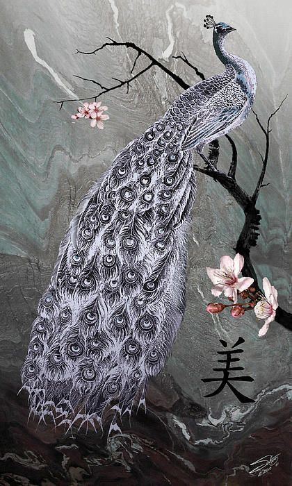 Since ancient times, the peacock has symbolized beauty, dignity, and enlightenment. This is Spadecaller's first image of the famous peacock; it was created in Photoshop by using a composite of digitally hand painted images.