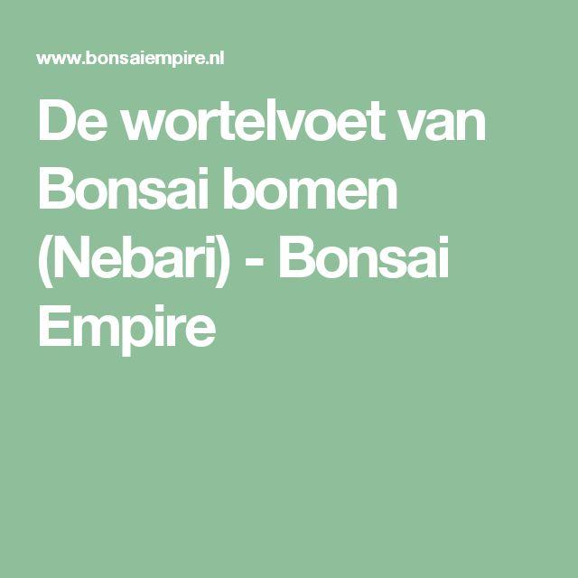 De wortelvoet van Bonsai bomen (Nebari) - Bonsai Empire