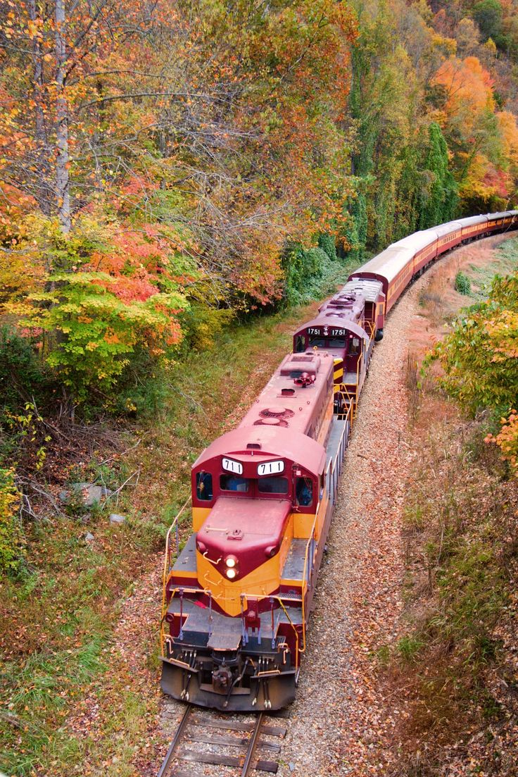 The Great Smoky Mountains Railroad in Bryson City has the perfect way to see the fall colors!