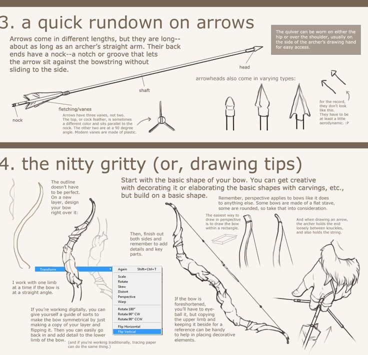 Recurve Bow Anatomy