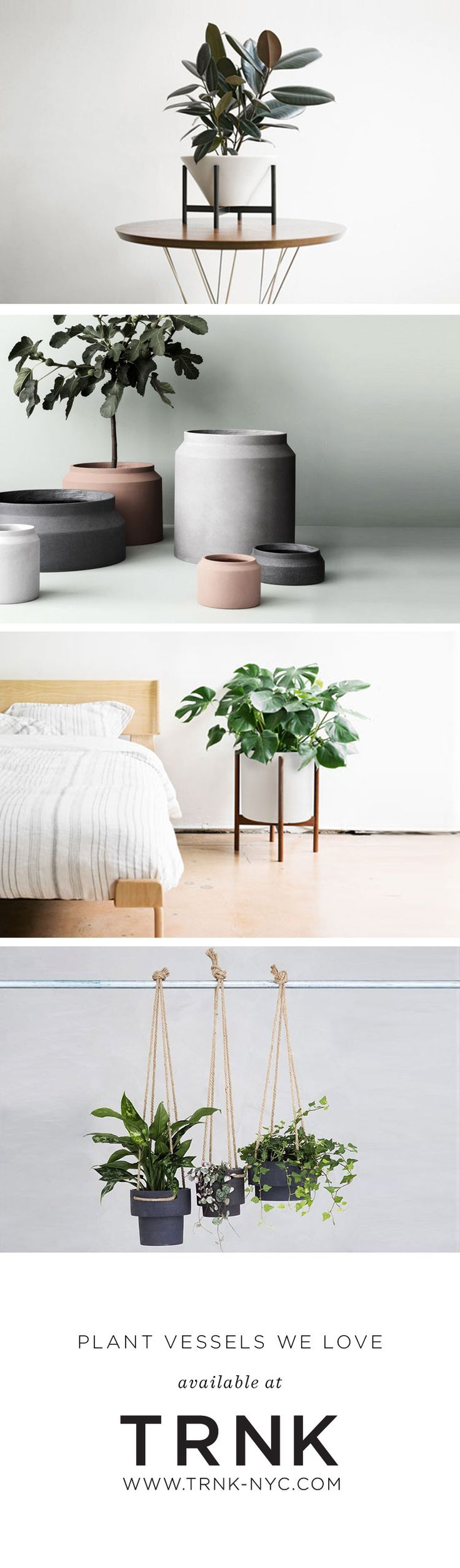 Read and shop 5 of our favorite plant vessels on #TRNK