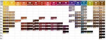 Schwarzkopf hair color chart pdf salon permanent colour code