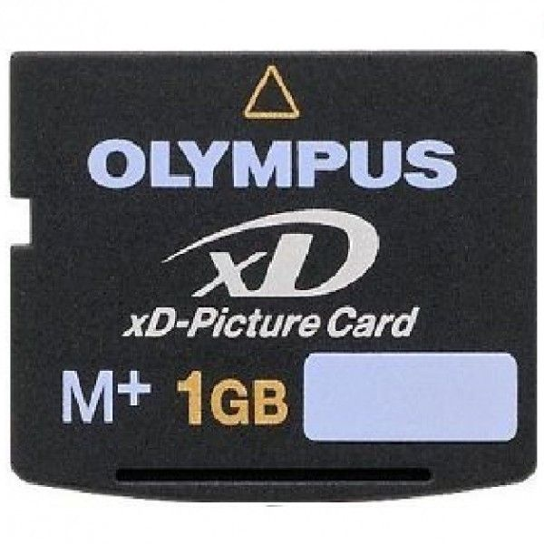 1GB M+ XD Memory Card via Polyvore featuring home, home decor and stationery