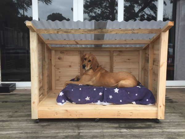 Roomy Pallet Dog Kennel Animal Houses  amp  Supplies. 1000  ideas about Outdoor Dog Area on Pinterest   Backyard dog
