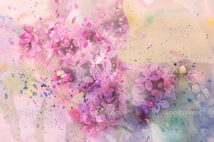 Веточка сиреневые цветы и акварель брызги — Стоковое фото #22282781