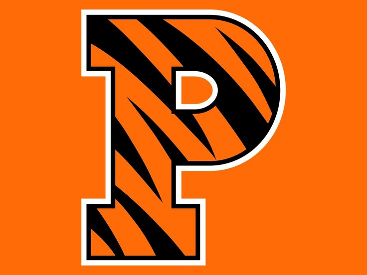 Image result for princeton tigers logo orange background