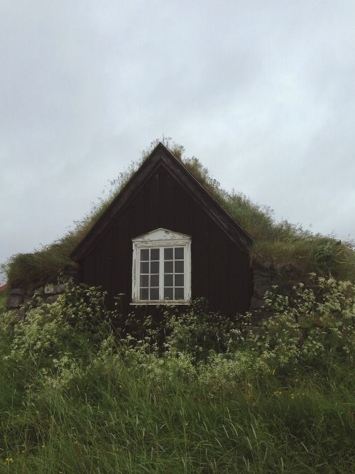 Visit www.organicroofs.co.uk to see how we can help you design your own green roof