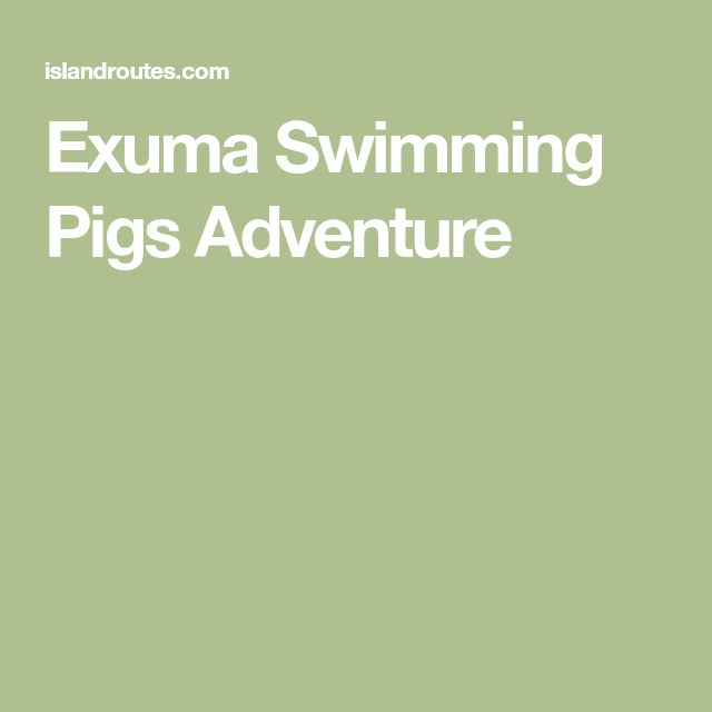 Exuma Swimming Pigs Adventure