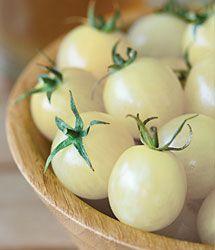 Italian Ice Tomato Seeds | White Tomato | Italian Ice - Urban Farmer
