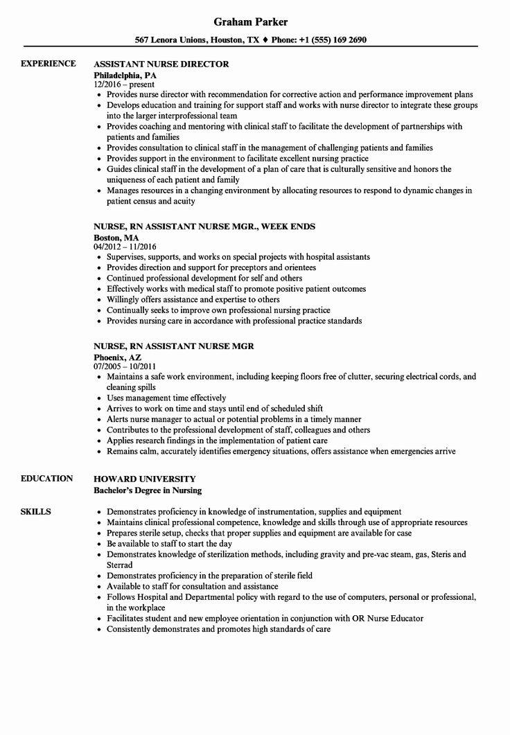 44++ Resume summary samples for nurses Format