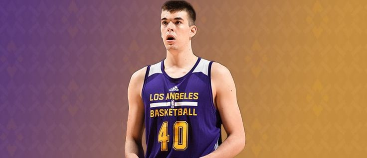 The Future of the Los Angeles Lakers' Frontcourt