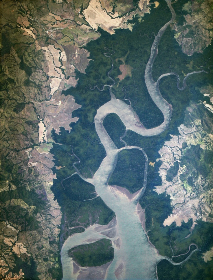 This Rio San Pablo in Veraguas, Panama, emptying into the Gulf of Montijo  http://science.time.com/2013/05/02/window-on-infinity-pictures-from-space-8/#ixzz2UsBXAopg