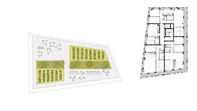 T7B2 PARIS RIVE GAUCHE FRES ARCHITECTES plan niveau R+9 - logements avenue de France et toiture terrasse partagée