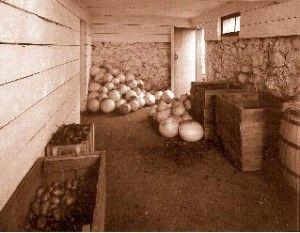 How to create a root-cellar for storage