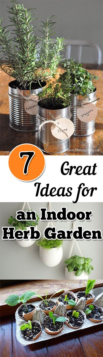 These are great ideas not only to create an herb garden, but to make it a cute decoration in your house!