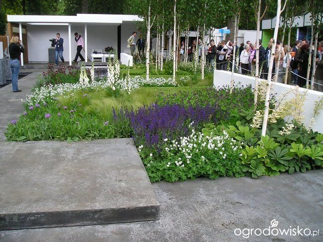 Galeria zdjęć - Chelsea Flower Show 2006 - Ogrodowisko