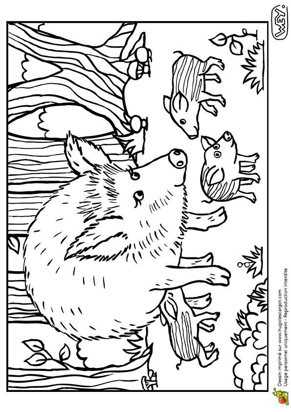 Dessin à colorier d'une maman laie et de ses petits marcassins - Hugolescargot.com