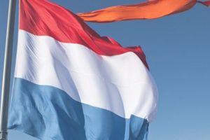 KONINGSDAG!  Heeft u de Nederlandse vlag en/of Oranje wimpel al in huis voor Koningsdag? Bestel deze dan nu op www.zonnerij.nl zodat ook bij u de vlag uit kan! Wilt u weten op welke dagen u nog meer kunt vlaggen? Op onze website vind u een overzicht in het vlaggenprotocol.