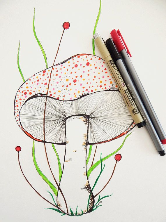 Colorful mushroom drawing. Botanical art. Mushroom by DecorAsylum
