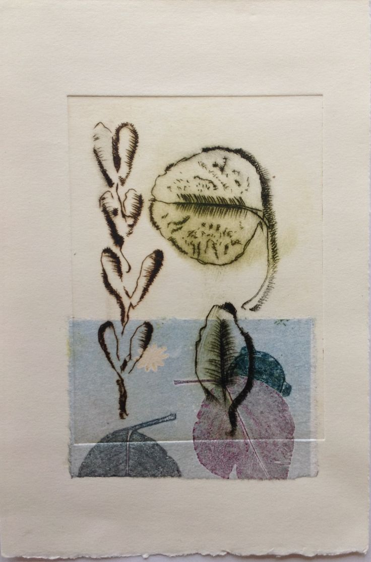 Still Life, leaves and pods: Drypoint etching on Stonehenge paper with Chine Colle. Image size 12.5cm x 19cm