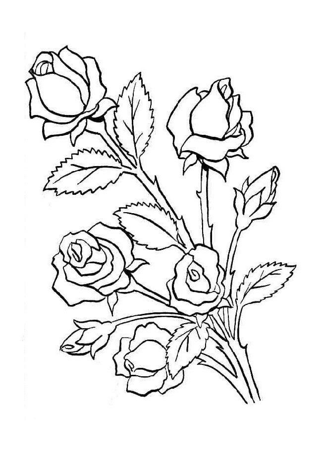 Imagens de flores para colorir e fotos de flores para colorir Buque de rosas