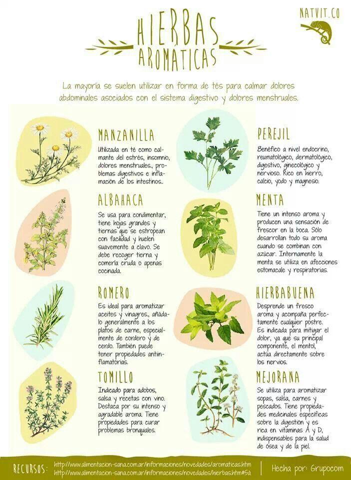 8 hierbas aromáticas con propiedades medicinales. #infrografia #hierbas